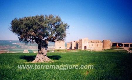 Castello di DRAGONARA - Area faunistica di elevato interesse
